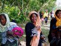 الأزهر يرصد مسارات هروب مسلمي الروهينجا لدول غير بنجلاديش
