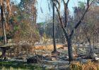 ميانمار تعترف بحرق 1152 منزلا للروهنجيا بحملتها الأخيرة