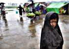 هل تنجح لجنة التحقيق الأممية في وقف نزيف الروهينجا؟