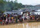 الهجرة الدولية: ارتفاع الروهنغيا الفارين إلى بنغلاديش لـ421 ...