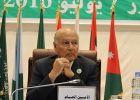 أبو الغيط: ندين الانتهاكات بحق أقلية الروهينجا المسلمة فى مي ...