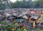 Rohingya Muslims could go back to Burma, says minister