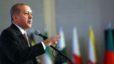 أردوغان يدعو العالم الإسلامي إلى التعاون لإنقاذ مسلمي أراكان