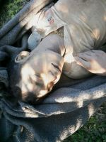الجيش البورمي يتحدى الضغوط الدولية ويطلق الرصاص على مئات الروهنجيا