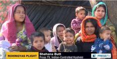 الآلاف من اللاجئين الروهنجيين في الهند يعيشون حياة بائسة