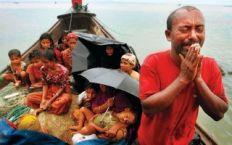 معاملة بورما للروهنجيا تجسيد للتطهير العرقي