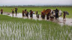 عدد اللاجئين الروهينجا في بنغلاديش يرتفع إلى 582 ألف شخص