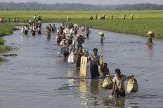 مفوضية اللاجئين: ثلث الروهينجا في بنغلاديش من الفئات الأضعف والأكثر عرضة للخطر