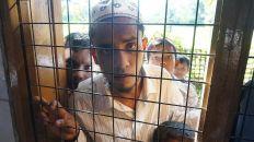 ناشط روهينغي يطالب الأمم المتحدة بوقف المجازر بحق المسلمين