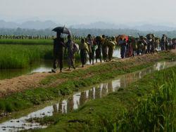 مسؤول أميركي يحث بورما على إعادة الروهينغا إلى قراهم