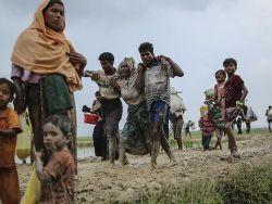 """مستشاران أمميان يتهمان حكومة ميانمار ومسلحين بوذيين بارتكاب إبادة بحق """"الروهنغيا"""""""
