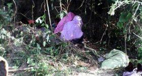مسلمو الروهنجيا يختبئون في الغابات هرباً من لجان الاحصاء الإجباري