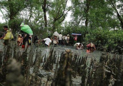 الروهنغيا يواصلون الفرار من بطش جيش ميانمار