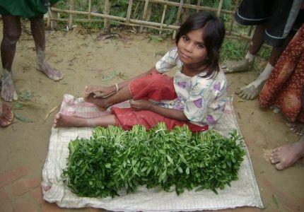 اللاجئون الروهنجيون في مخيمات بنجلاديش يواجهون المجاعة