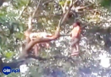 أخبار الآن - بوذيون يعلقون مسلما أعلى شجرة ويشنقونه