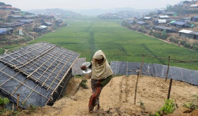بنجلادش تقطع أشجار الغابات لاستيعاب اللاجئين الروهينجا من ميانمار