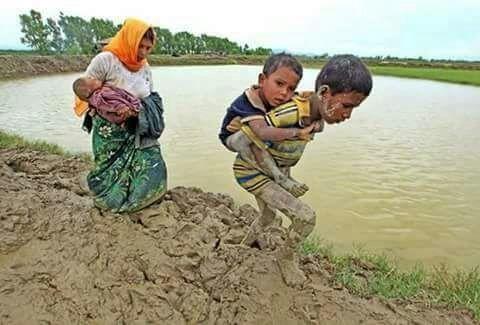 200 ألف طفل روهينجي في بنغلاديش بحاجة إلى الدعم العاجل