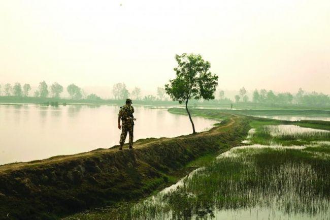 حرس حدود بنجلاديش تقبض على 313 من مسلمي الروهنجيا