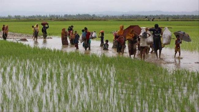 الأمم المتحدة: 60 ألف شخص من الروهينغا لجؤوا إلى بنغلادش