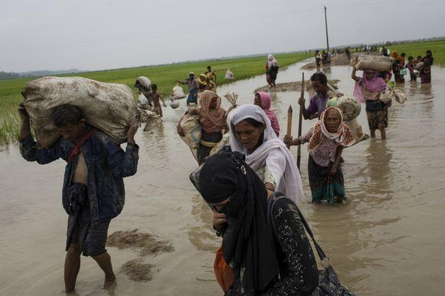 وصول ألفي لاجئ روهنجي يوميا إلى بنغلاديش ووكالات الإغاثة تطالب بمساعدات إضافية